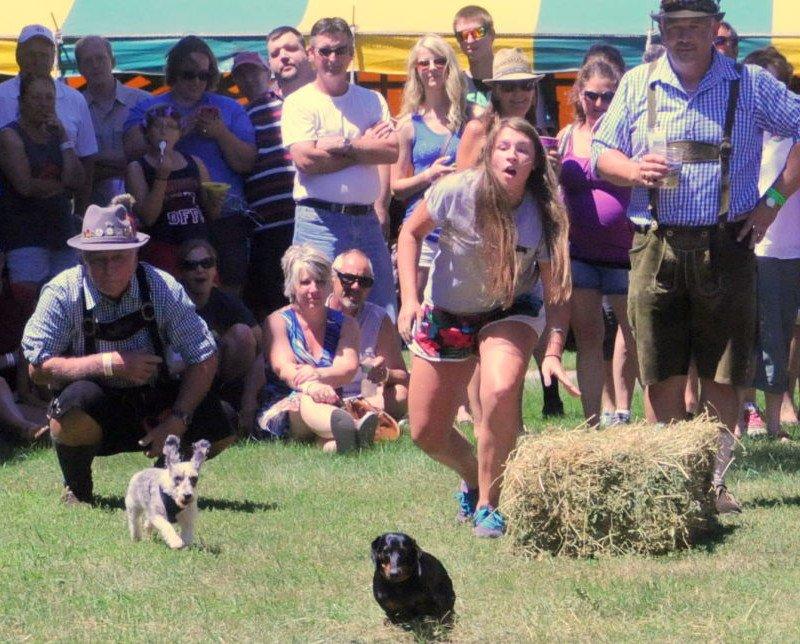 Bavarian Blast Dog Race